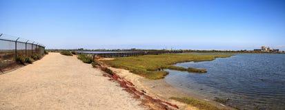 Bana längs det wetlan fridsamma och stillsamma träsket av Bolsa Chica Arkivbild