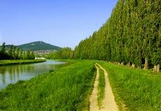 Bana mellan floden och abeleträden i sommar, Slovakien Arkivbild