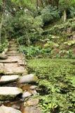 Bana mellan grön vegetation i en trädgård royaltyfria bilder