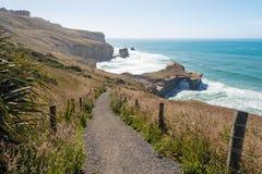 Bana ner till den naturliga bågen på tunnelstranden, Dunedin, Nya Zeeland Royaltyfria Foton