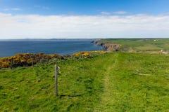 Bana Pembrokeshire för Haroldstone hakaWales kust Royaltyfri Bild