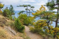 Bana som ner leder till Blacket Sea Arkivbild
