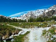 bana, som spolar till och med de alpina ängarna av den Alpe deveroen, Alpi Arkivfoto