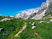 bana, som spolar till och med de alpina ängarna av den Alpe deveroen, Alpi Arkivbild