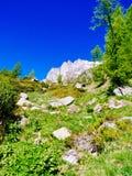 bana, som spolar till och med de alpina ängarna av den Alpe deveroen, Alpi Fotografering för Bildbyråer