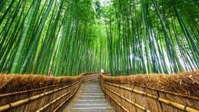 Bana till bambuskogen, Arashiyama, Kyoto, Japan Royaltyfria Bilder
