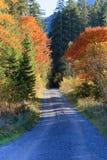 Bana till himmel - hösten färgar i fjällängarna Arkivbild