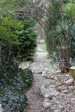 Bana till och med den gröna trädgården Bana till och med naturlig grön ram för grön skog med kopieringsutrymme Stenar bana i träd royaltyfri bild