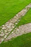 Bana till och med en grön gräsmatta royaltyfri foto