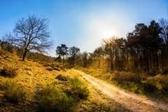 Bana till och med ett beautyful landskap på soluppgång Arkivbild