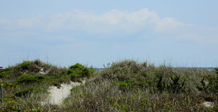 Bana till och med gräs över sanddyn royaltyfri fotografi