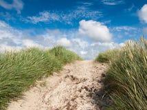 Bana till och med sanddyn Fotografering för Bildbyråer