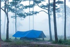 Bana till och med skogen i den tidiga våren under nederbörd Royaltyfri Bild