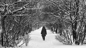 Bana till och med snön Royaltyfria Foton