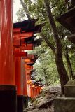Bana till och med Torii i Kyoto arkivfoto
