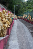 Bana till Shatin 10000 Buddha tempel, Hong Kong Royaltyfri Foto