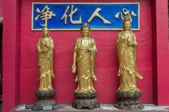 Bana till Shatin 10000 Buddha tempel, Hong Kong Fotografering för Bildbyråer