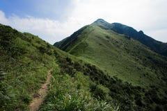 Bana till toppmötet över kullar royaltyfri foto