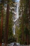 Bana till Yosemite Falls royaltyfri bild