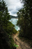 Bana under bergvegetationen som det leder ner till stranden Arkivbilder