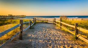 Bana över sanddyn till Atlanticet Ocean på soluppgång i Ventnor Arkivfoto