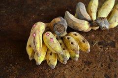 Banaan met pillen voor zieke olifant Stock Fotografie