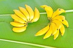 Banaan op banaanblad Royalty-vrije Stock Fotografie