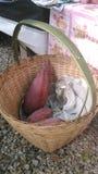 Banaanbloesem in bamboemand Stock Afbeeldingen