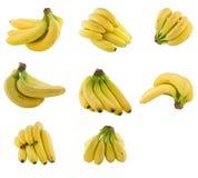 bananów grona kolekcja Fotografia Stock