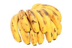 banan Royaltyfria Foton