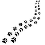 Banan av svarta fotspår för djur, hunden eller kattbanan vänder rätt på vit bakgrund Royaltyfri Foto