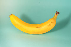 Banan on a blue background. Ripe banan on a blue background stock images