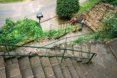 Banan för gränden för stenbanagångbanan med gröna träd och buskar parkerar in Royaltyfri Bild