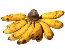 Banan Fuit Arkivbild