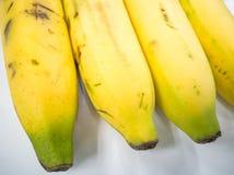banan grupa Zdjęcie Stock