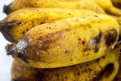 Banan med formen eller svampar på den vita bakgrunden Arkivfoto