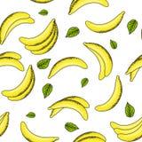 Banan- och sidamodell vektor illustrationer