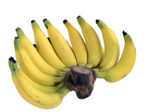 Banan på vitbakgrund Royaltyfri Bild