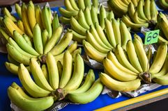 Banan som säljs i marknad Arkivbild
