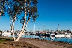 Banan till och med Chula Vista Bayfront parkerar och marina Arkivbild
