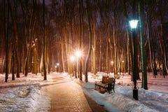 Banan väg i vinter parkerar i ljus av lyktor på aftonen natt Arkivbild