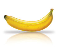 Banana. Fruit illustration with texture Stock Image