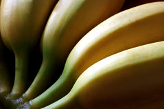 Banana Stock Photo