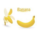 Banana. Vector banana isolated on an white background Vector Illustration