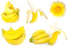 Banana. Set of banana on a white background stock images