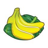 Banana. Icon of the three bananas Stock Photo