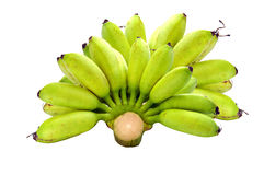 Banana. S on the background Stock Image