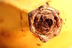 banana Imagens de Stock