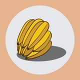 2 banana ilustracji