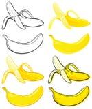 Banana illustrazione di stock